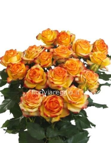 Consegna Fiori On Line.Rose Arancio A Steli Acquista Online Fiori A Viareggio Consegna